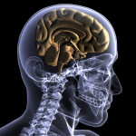 Upper Cervical Chiropractic: Much More Than Just Bad Backs