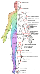 can arthritis affect the spine