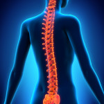 Five Ways to Improve the Health of Your Spine