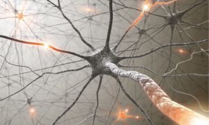 natural-treatment-for-multiple-sclerosis-inflammation